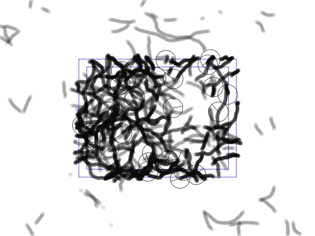 Algo_Draw_labeled_6-4-2017_13.33.29.png